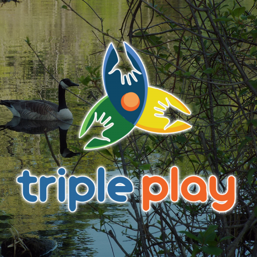 Triple Play Membership [$100]